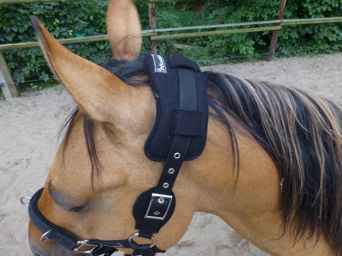Durch Polsterung und Ergonomie hilft das Tripo Pferden mit Empfindlichketen in diesem Bereich.